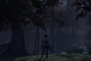 A woman armed with pistols in a misty forest