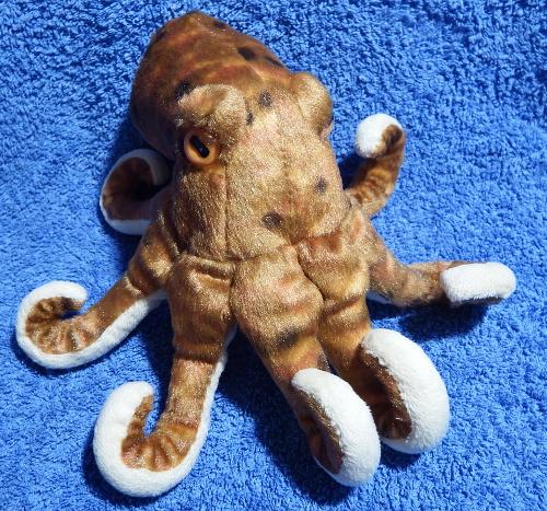 Cuddly octopus